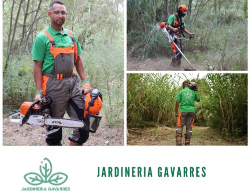 """""""Emprendre en temps d'incertesa, millor fer-ho acompanyat: El cas de Jardineria Gavarres"""""""